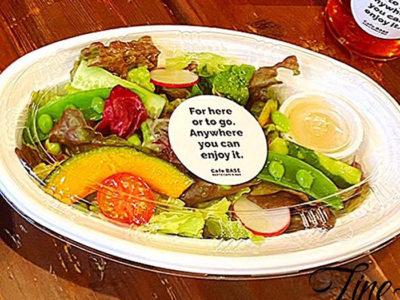 10種のベジタブルサラダ